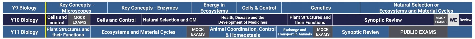 Science Curriculum 2021 2022 GCSE Biology